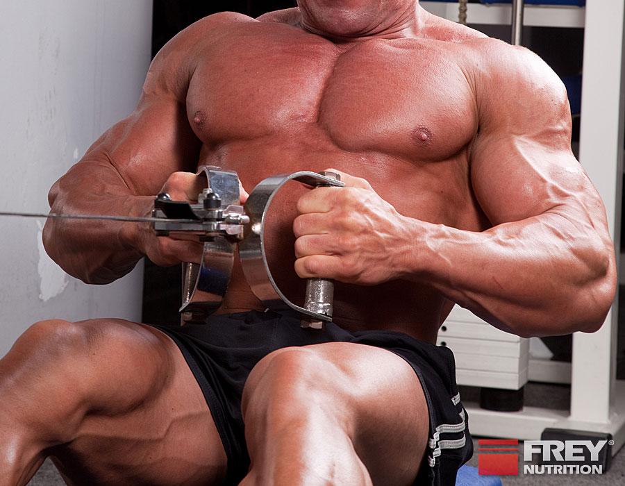 In der Aufbauphase geht es um maximalen Muskelaufbau