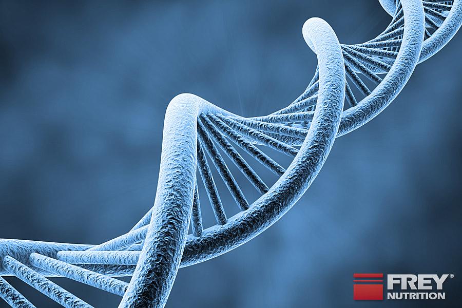 Teil 8 - Aminosäuren und ihre Bedeutung