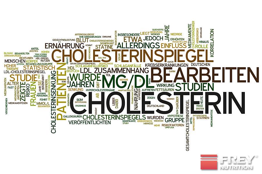 Cholesterin wird unterteilt in LDL- und HDL-Cholesterin