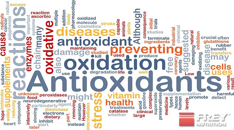 Antioxidantien tragen zur Gesunderhaltung bei