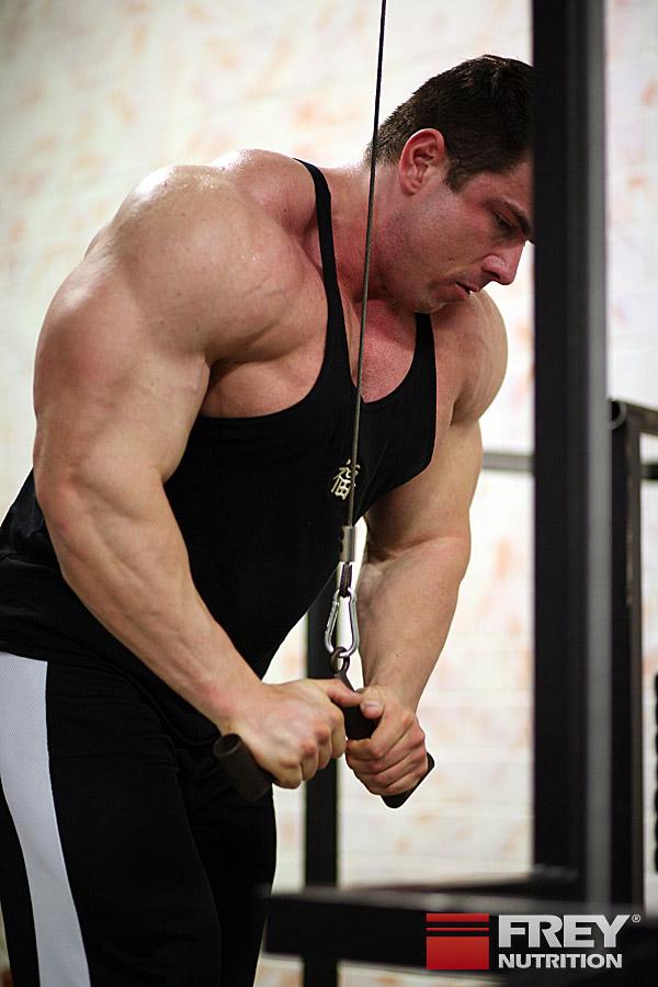Muskeln aufbauen als Vegetarier