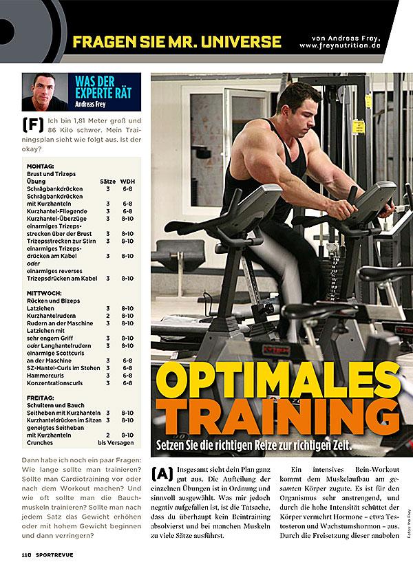 Kolumne 67 - Optimales Training