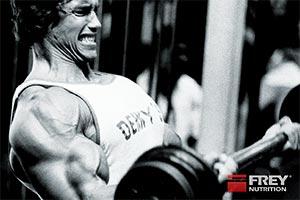 Kolumne 51: Trainieren wie Arnold
