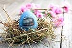 FREY Nutrition wünscht frohe Ostern