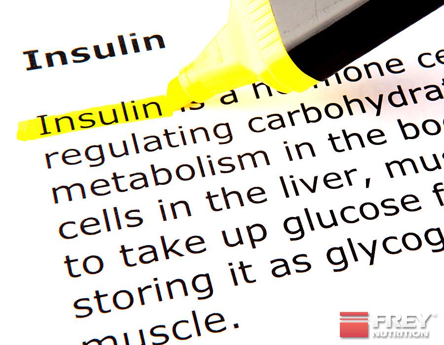 Insulin verstärkt den Creatineinstrom in die Muskeln