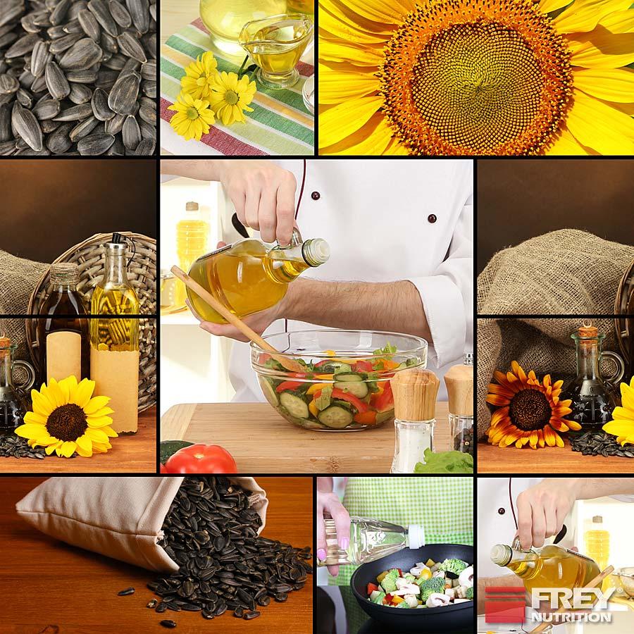 Pflanzenöle und Nüsse enthalten viel Vitamin E