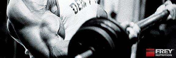 Kolumne 51 - Trainieren wie Arnold