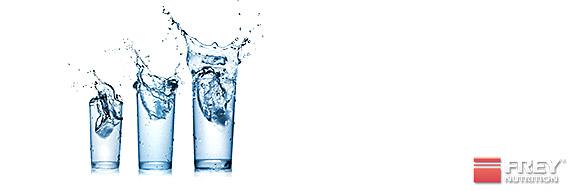 Weichmacher im Mineralwasser