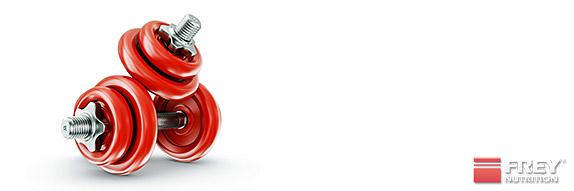 Krafttraining und Fettverbrennung