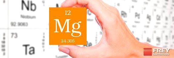 Warum Magnesium für Sportler so wichtig ist