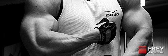 Kolumne 79 - Muskelaufbau