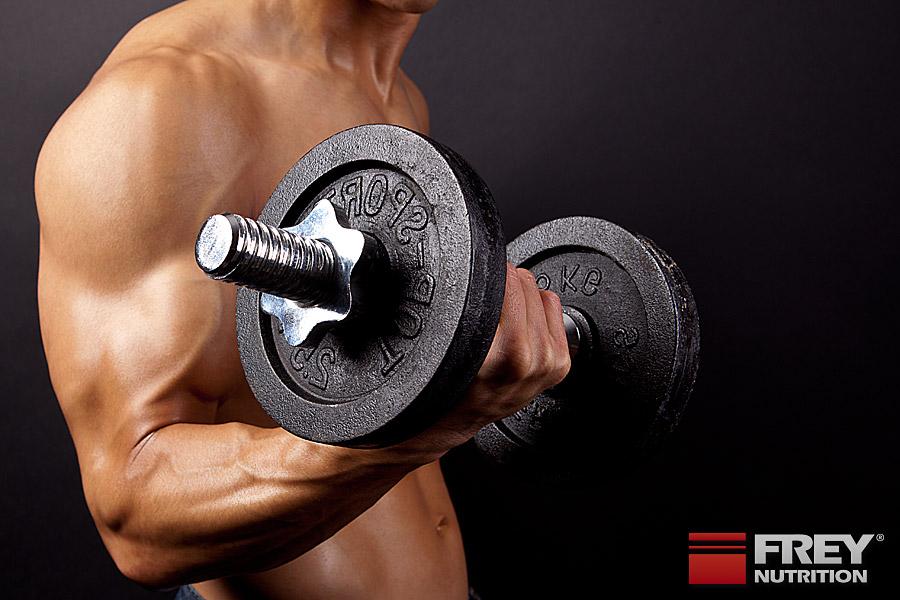 Der Trainingsreiz führt zur Adaption des Muskels